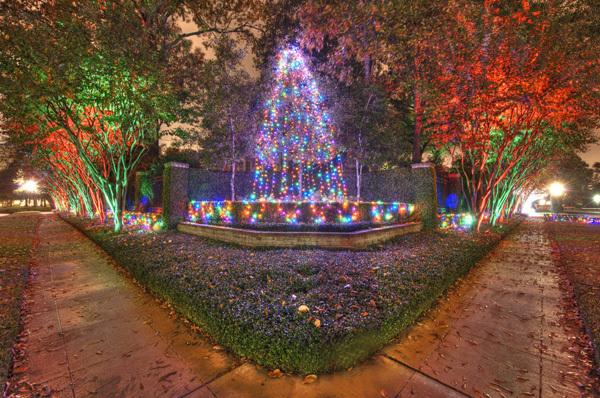 christmas-lights1