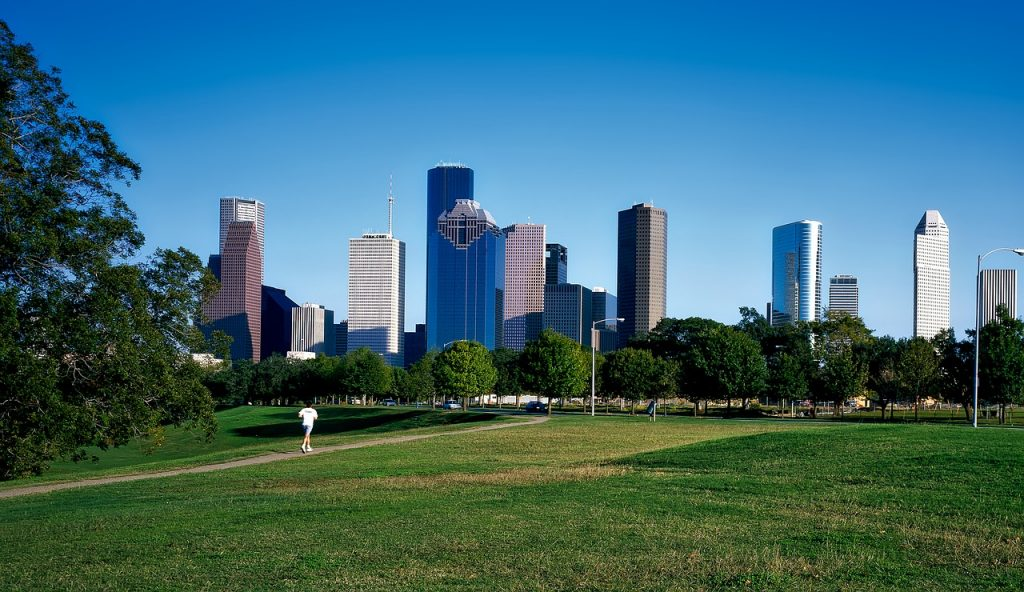 Image of a park in Houston with buildings on the landscape